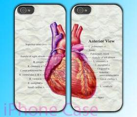 custom iPhone 4 case Couple love case Heart Anatomy